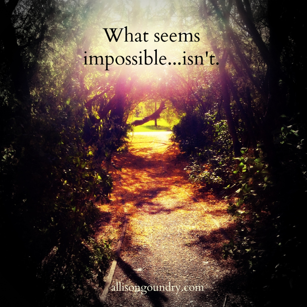 What Seems Impossible ALLIG 2015